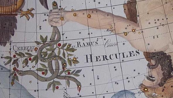 De verouderde sterrenbeelden Cerberus en Ramus Pomifer