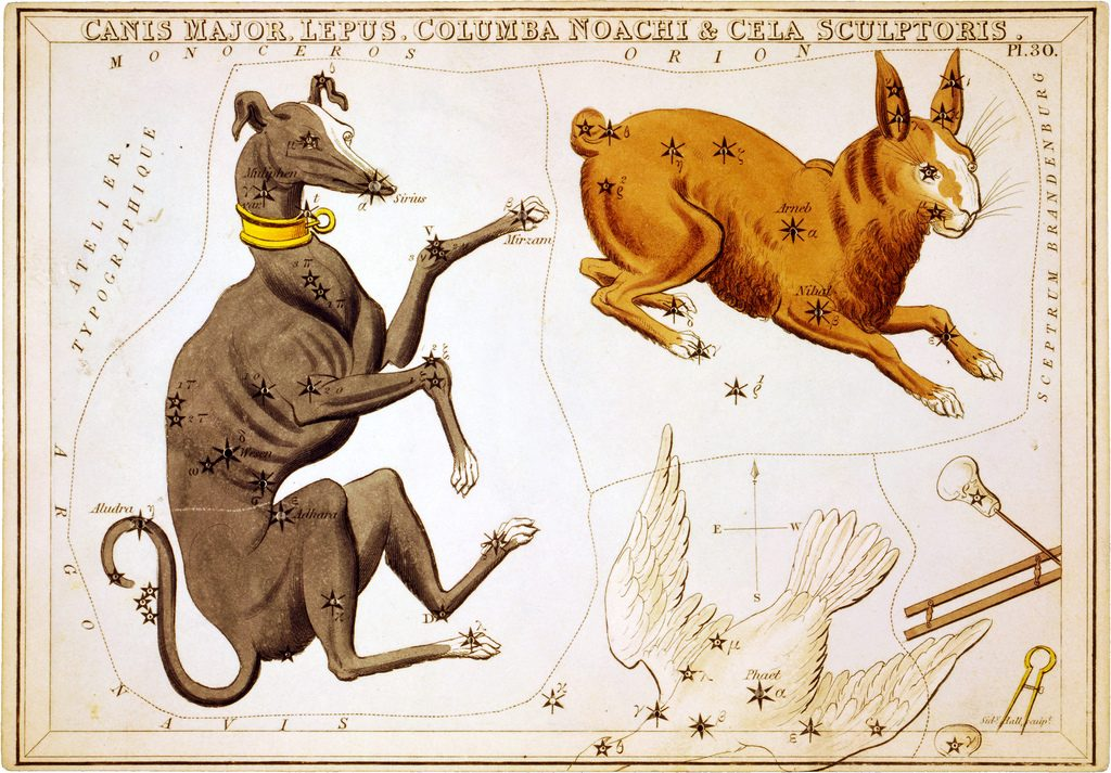 Canis Major - Urania's Mirror