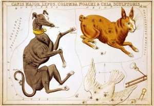 Columba - Urania's Mirror