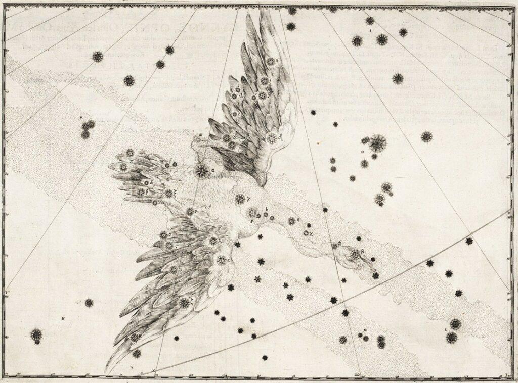 Het sterrenbeeld Cygnus uit de steratlas van Johann Bayer