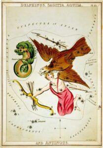 Delphinus - Urania's Mirror
