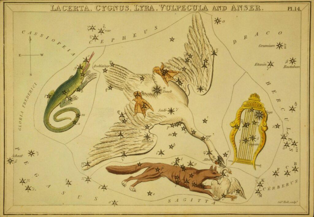Cygnus - Urania's Mirror
