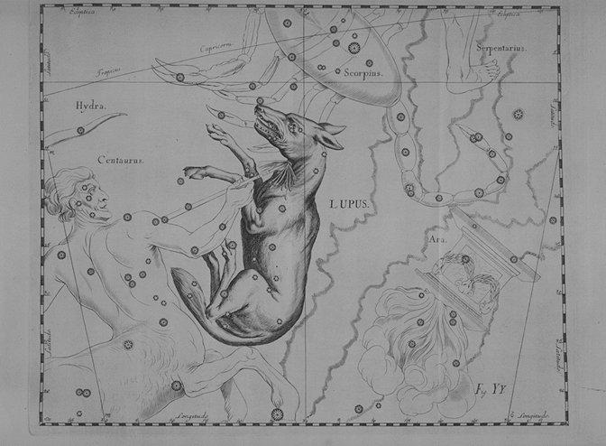 Het sterrenbeeld Lupus - Wolf volgens Hevelius