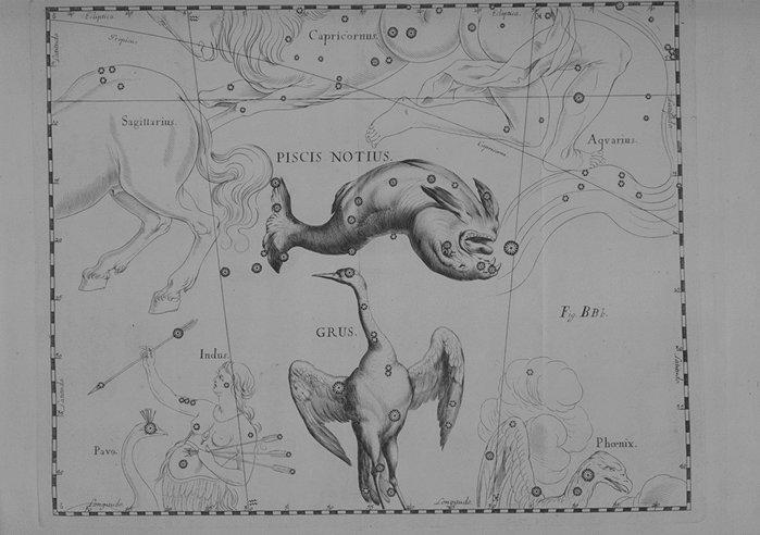 Grus uit de Uranographia