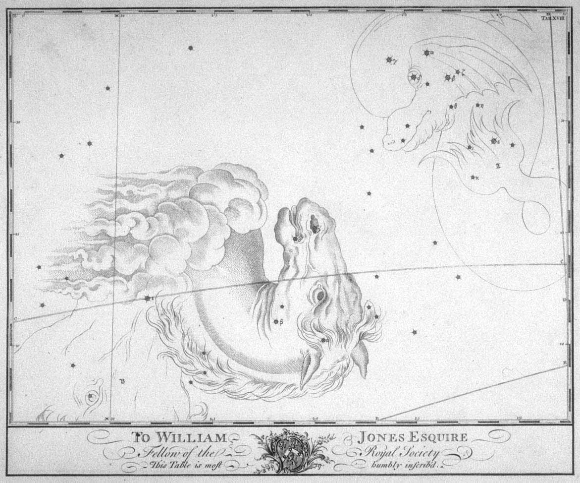 Equuleus - Veulen uit de steratlas van John Bevis