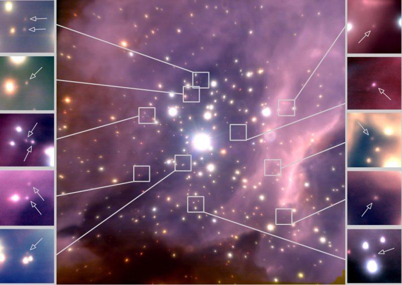 Bruine dwergen in de sterrenhoop RCW38 in het sterrenbeeld Vela - Zeilen