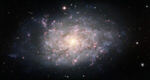NGC 7793 in Sculptor