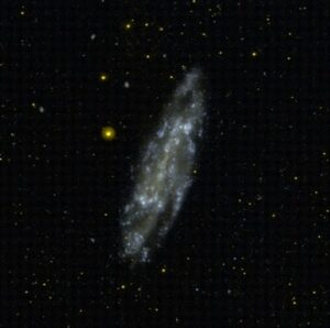 NGC 4236 in Draco