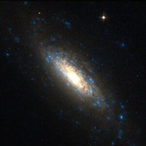 NGC 5879 in Draco