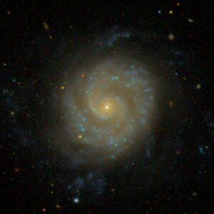 NGC 3596 in Leo