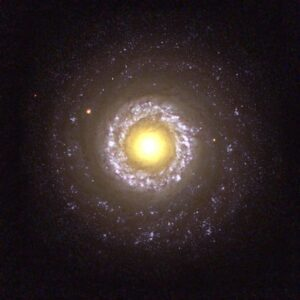 NGC 7742 in Pegasus